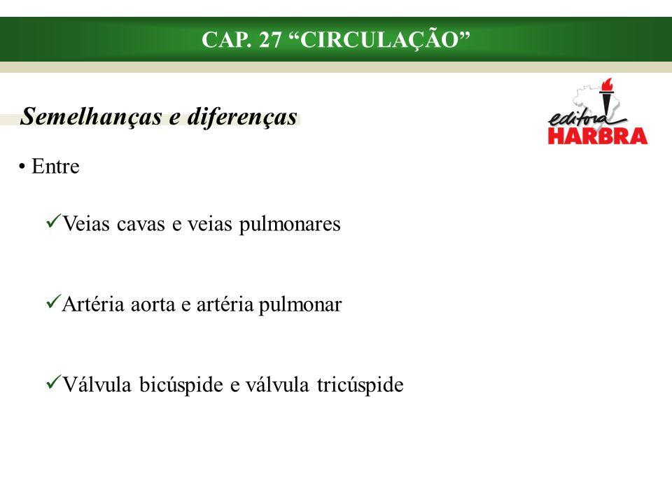 Semelhanças e diferenças CAP.