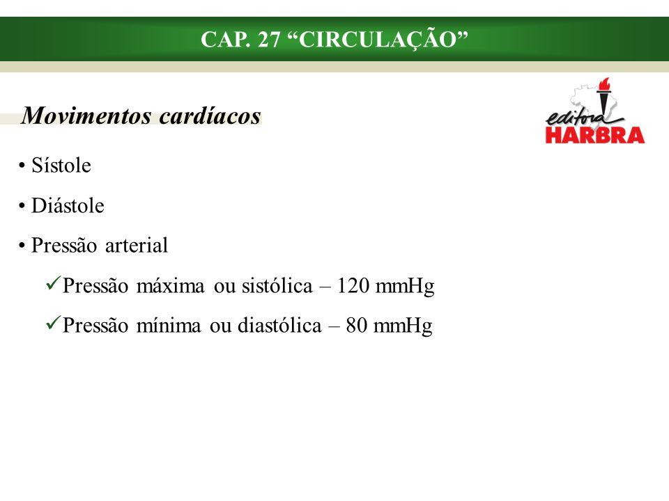 Vasos sangüíneos CAP.