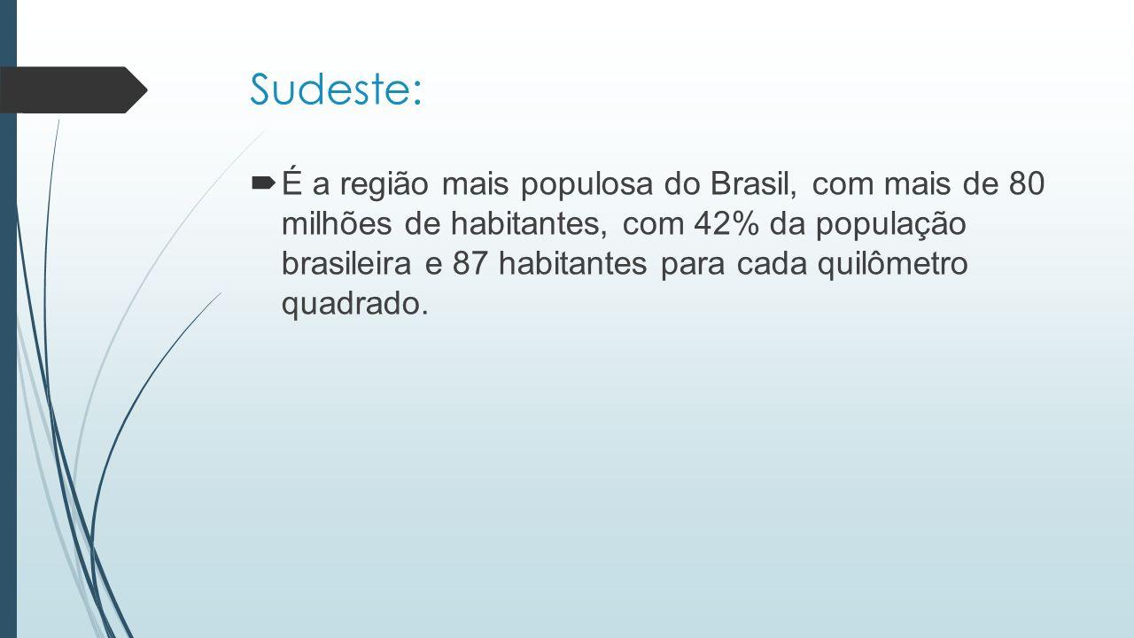 Sudeste:  É a região mais populosa do Brasil, com mais de 80 milhões de habitantes, com 42% da população brasileira e 87 habitantes para cada quilôme