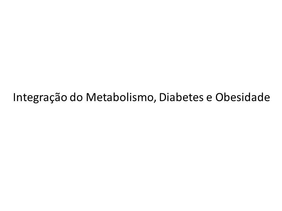 Integração do Metabolismo, Diabetes e Obesidade