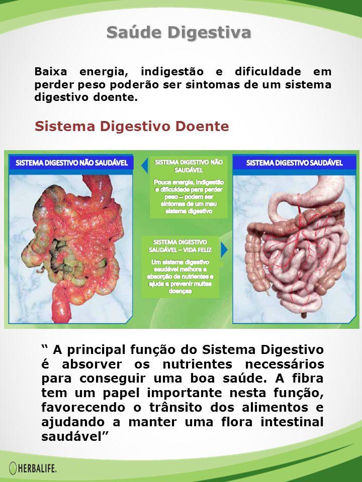 A principal função do Sistema Digestivo é absorver os nutrientes necessários para conseguir uma boa saúde.