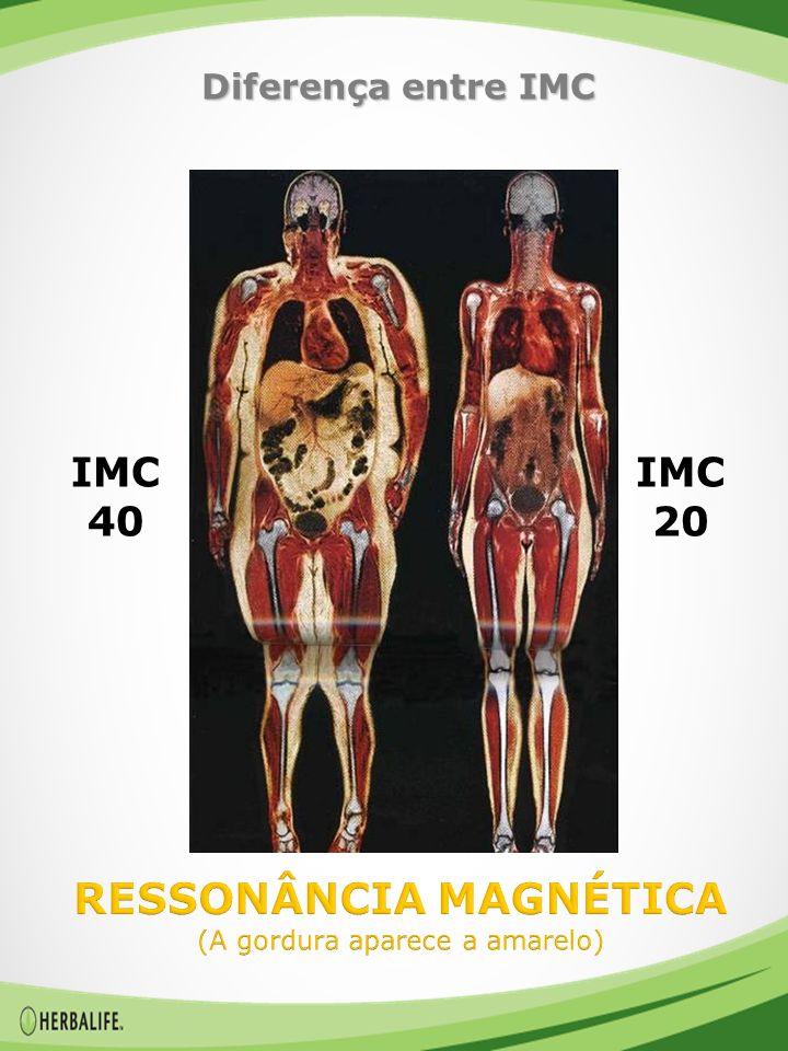 IMC 40 Diferença entre IMC IMC 20