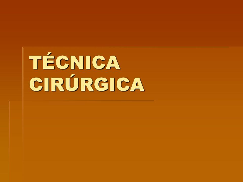 Técnica Cirúrgica  Constitui-se de uma seqüência de movimentos e atos harmônicos executados manualmente ou através de instrumentos, materiais e aparelhos para a realização de determinado ato cirúrgico, diagnóstico ou terapêutico.