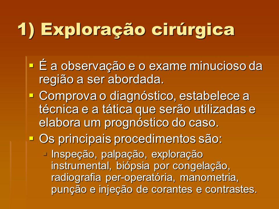 1) Exploração cirúrgica  É a observação e o exame minucioso da região a ser abordada.  Comprova o diagnóstico, estabelece a técnica e a tática que s
