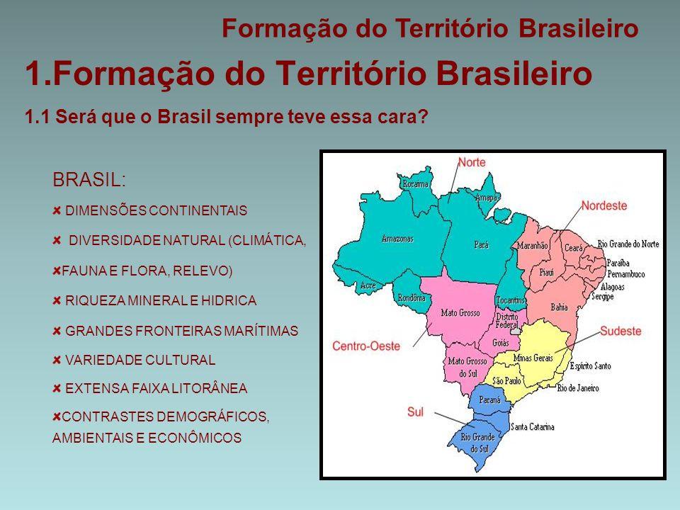 1.Formação do Território Brasileiro 1.1 Será que o Brasil sempre teve essa cara.