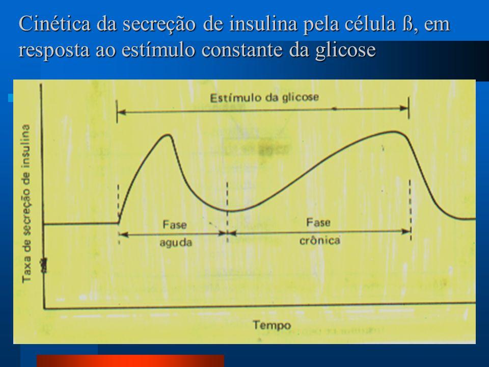 Cinética da secreção de insulina pela célula ß, em resposta ao estímulo constante da glicose