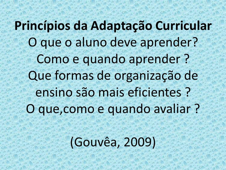 Princípios da Adaptação Curricular O que o aluno deve aprender? Como e quando aprender ? Que formas de organização de ensino são mais eficientes ? O q