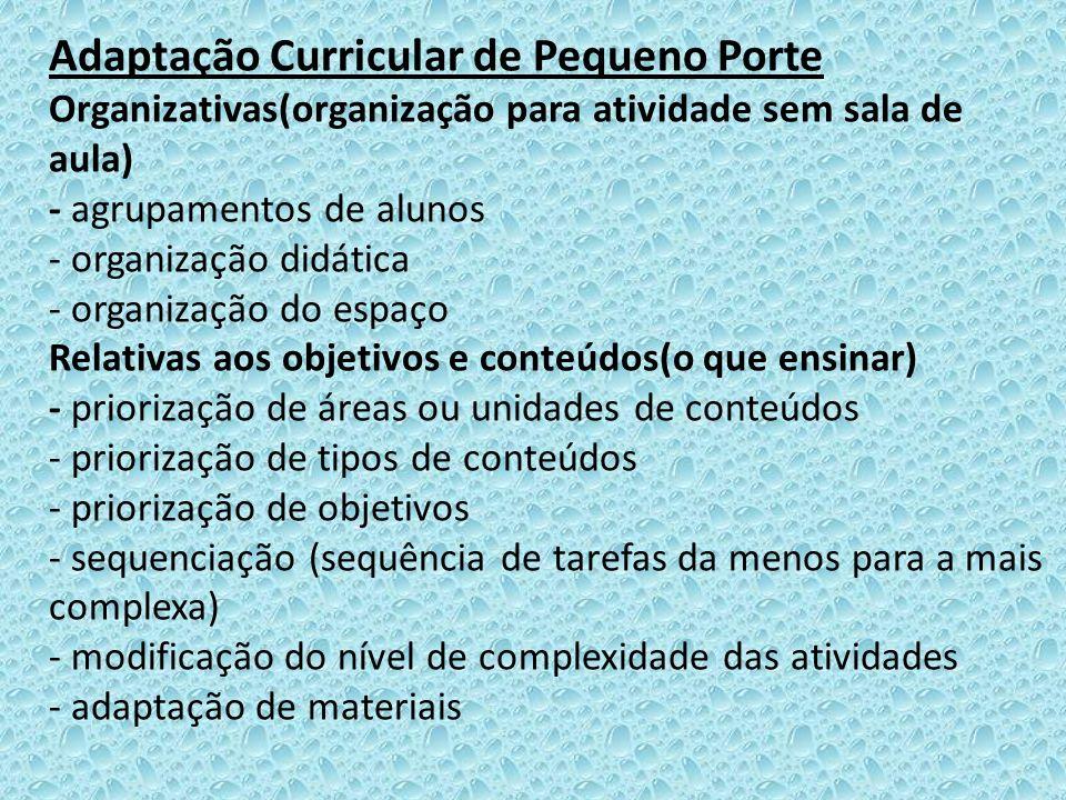Adaptação Curricular de Pequeno Porte Organizativas(organização para atividade sem sala de aula) - agrupamentos de alunos - organização didática - org