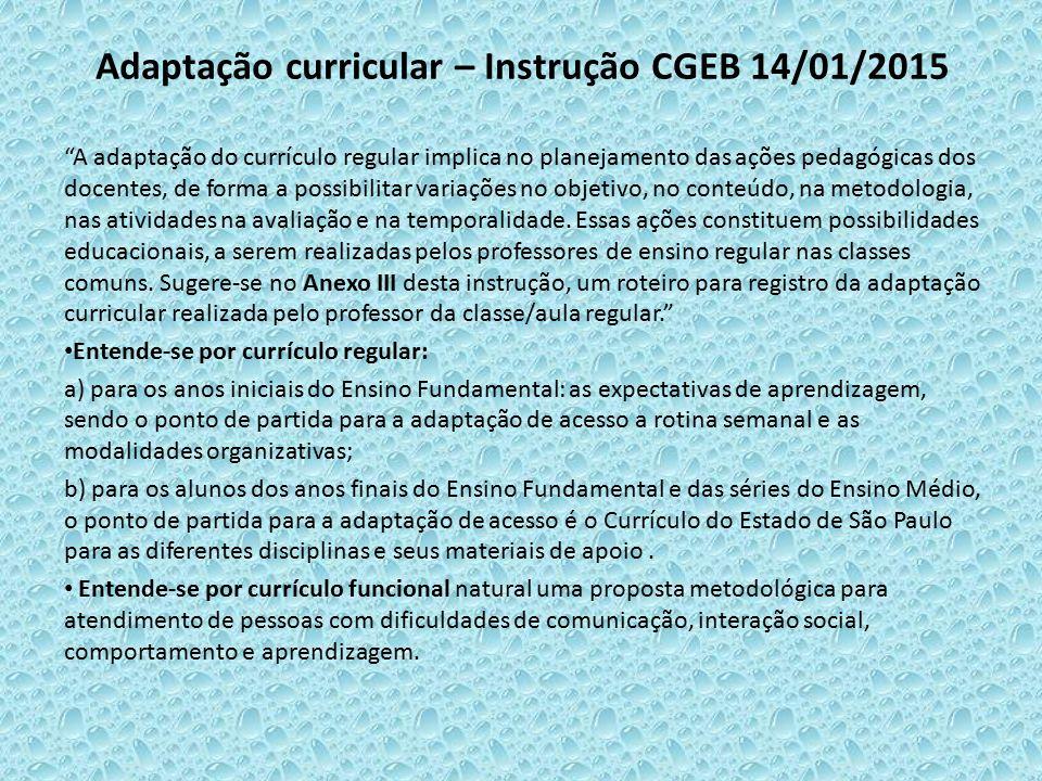 """Adaptação curricular – Instrução CGEB 14/01/2015 """"A adaptação do currículo regular implica no planejamento das ações pedagógicas dos docentes, de form"""