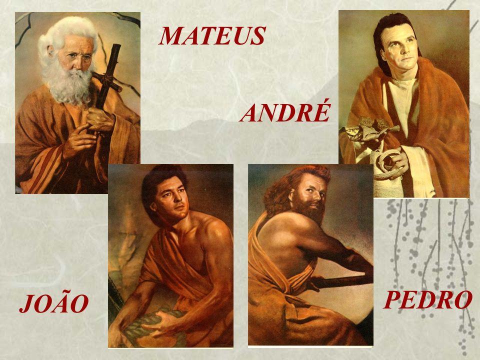 JOÃO ANDRÉ MATEUS PEDRO