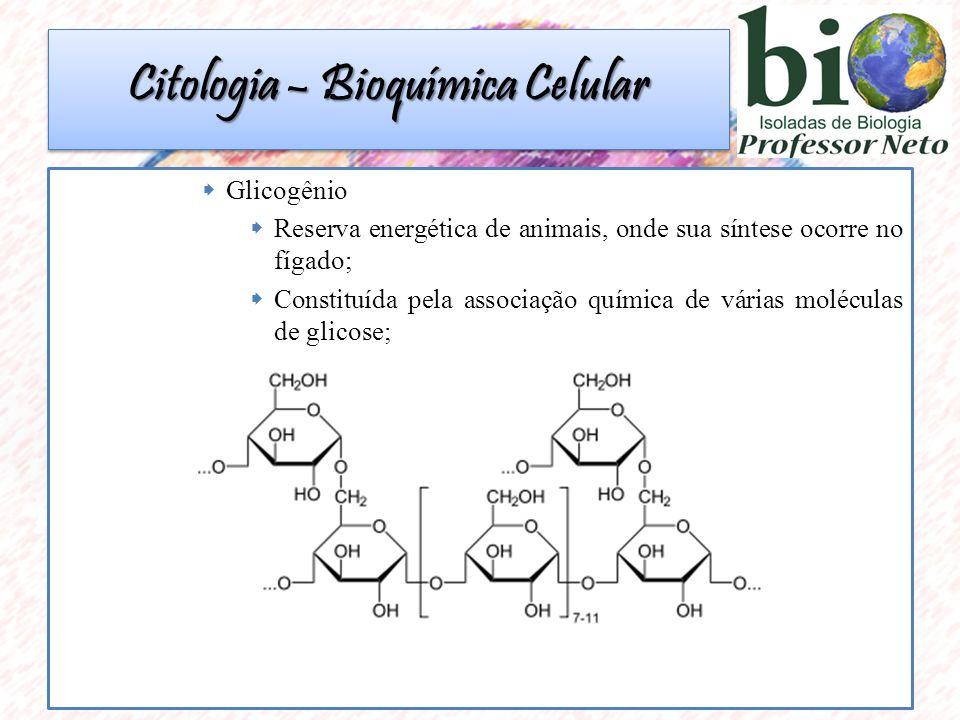  Glicogênio  Reserva energética de animais, onde sua síntese ocorre no fígado;  Constituída pela associação química de várias moléculas de glicose; Citologia – Bioquímica Celular