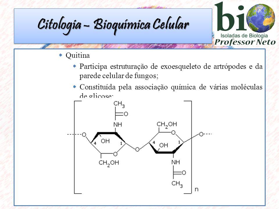  Quitina  Participa estruturação de exoesqueleto de artrópodes e da parede celular de fungos;  Constituída pela associação química de várias moléculas de glicose; Citologia – Bioquímica Celular
