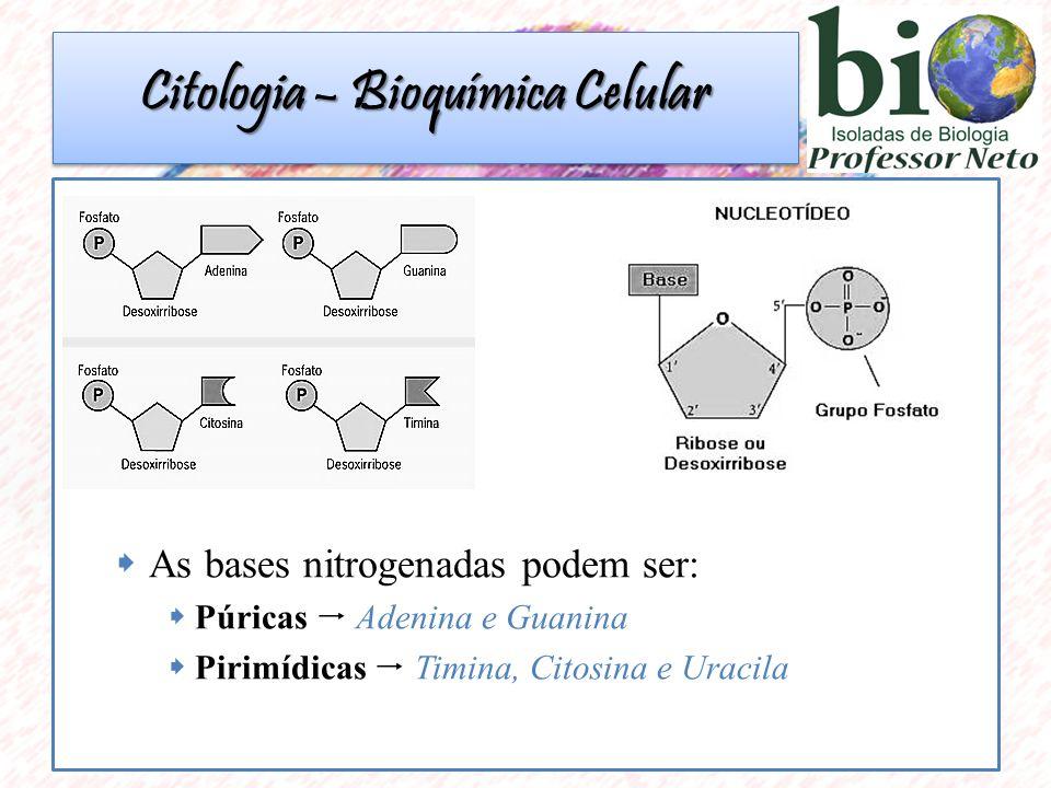  As bases nitrogenadas podem ser:  Púricas  Adenina e Guanina  Pirimídicas  Timina, Citosina e Uracila Citologia – Bioquímica Celular