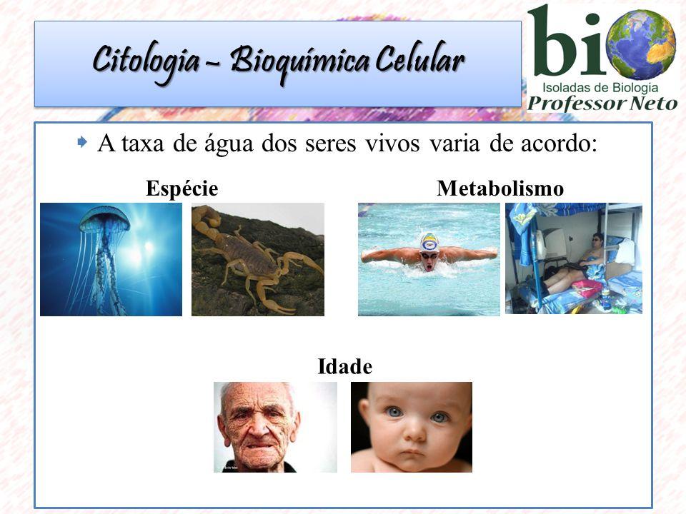  DNA  Características hereditárias;  Molécula em forma de dupla hélice, ligadas a partir de pontes de hidrogênio; Citologia – Bioquímica Celular