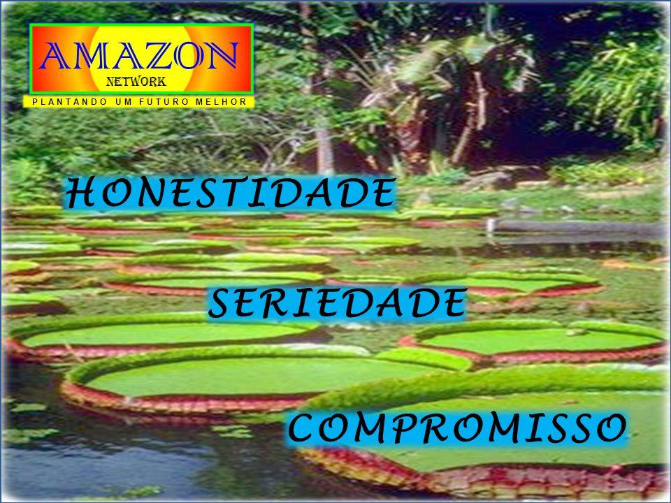 O MERCADO DE VENDAS DIRETAS VENDEDOR O MERCADO TRADICIONAL COMPRADOR MERCADO MULTINÍVEL CONSUMIDOR INTELIGENTE PLANTANDO UM FUTURO MELHOR AMAZON Network