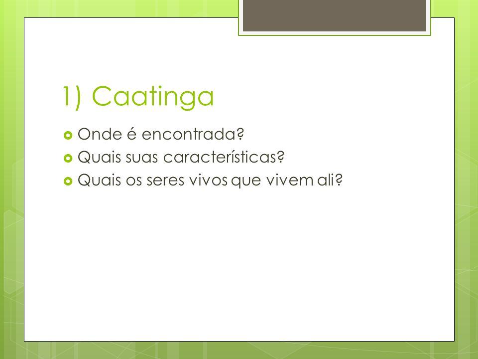 1) Caatinga  Onde é encontrada. Quais suas características.
