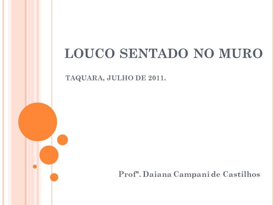 LOUCO SENTADO NO MURO TAQUARA, JULHO DE 2011. Profª. Daiana Campani de Castilhos