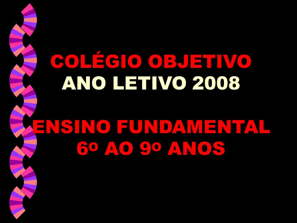 COLÉGIO OBJETIVO ANO LETIVO 2008 ENSINO FUNDAMENTAL 6 O AO 9 O ANOS