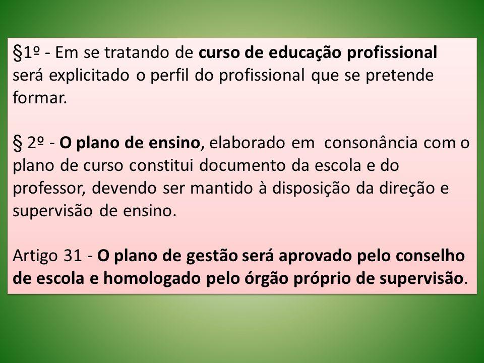 §1º - Em se tratando de curso de educação profissional será explicitado o perfil do profissional que se pretende formar. § 2º - O plano de ensino, ela