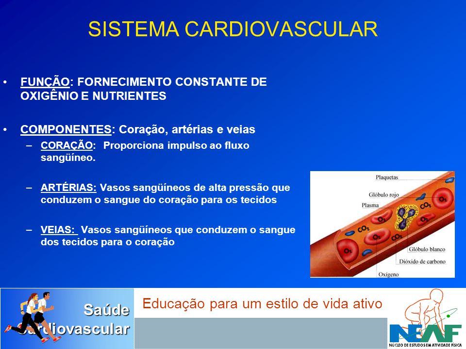 SaúdeCardiovascular Educação para um estilo de vida ativo SISTEMA CARDIOVASCULAR FUNÇÃO: FORNECIMENTO CONSTANTE DE OXIGÊNIO E NUTRIENTES COMPONENTES: