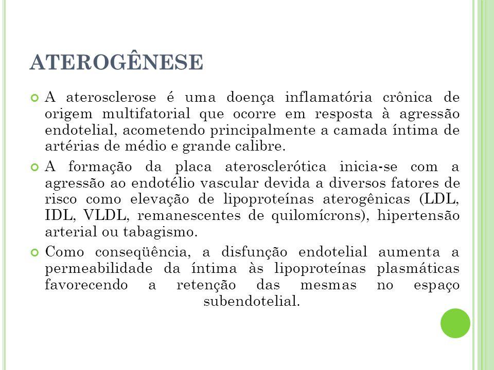 ATEROGÊNESE A aterosclerose é uma doença inflamatória crônica de origem multifatorial que ocorre em resposta à agressão endotelial, acometendo princip