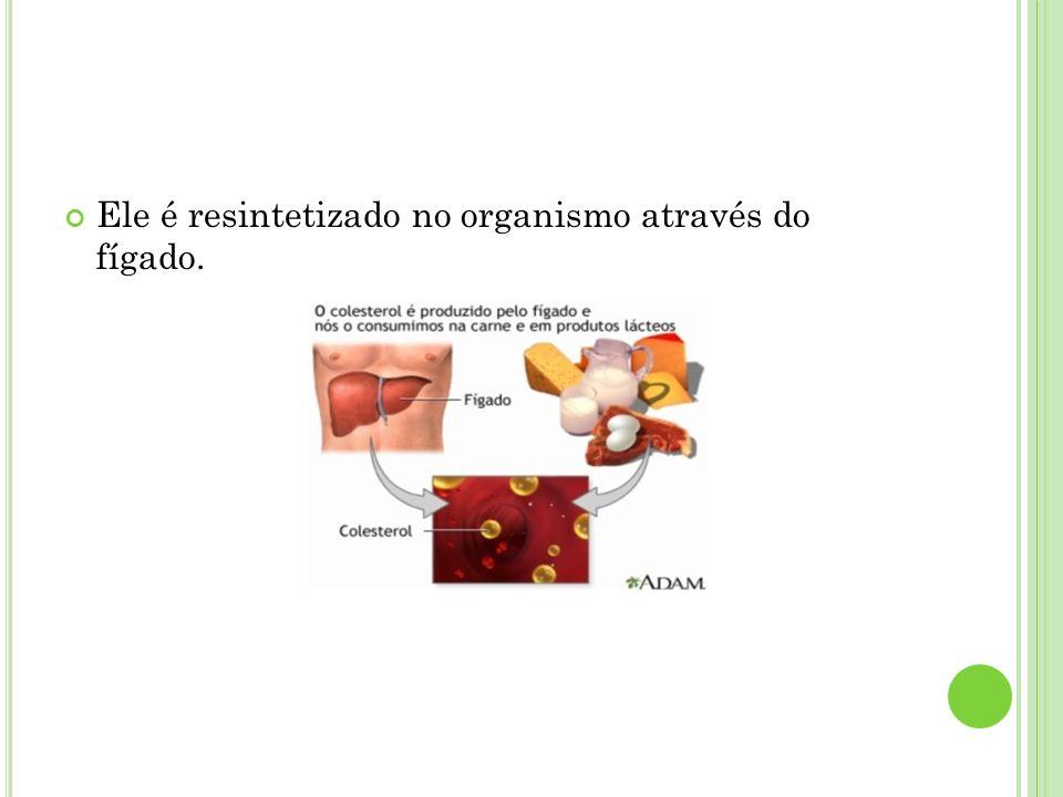 Ele é resintetizado no organismo através do fígado.