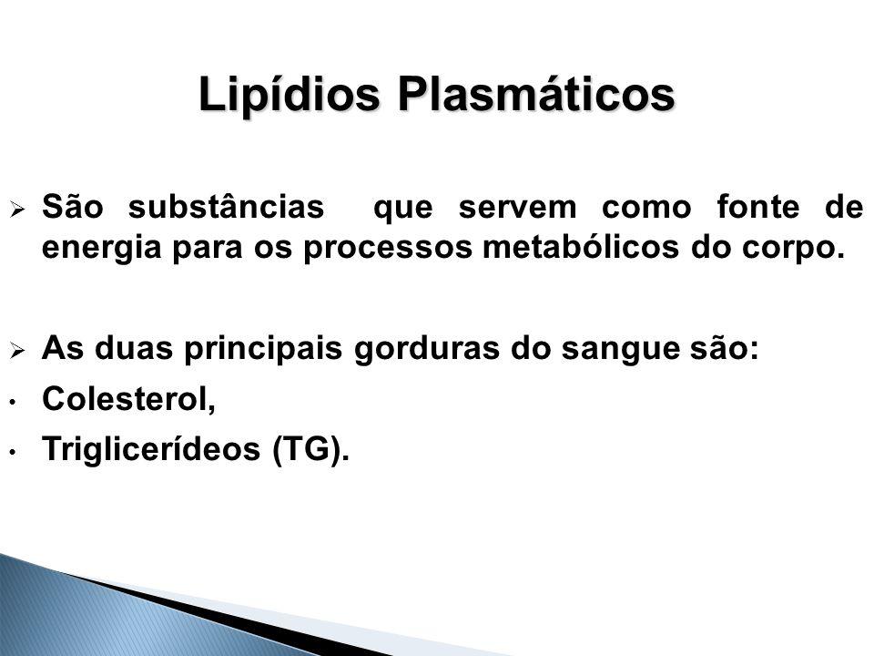 Lipídios Plasmáticos  São substâncias que servem como fonte de energia para os processos metabólicos do corpo.  As duas principais gorduras do sangu