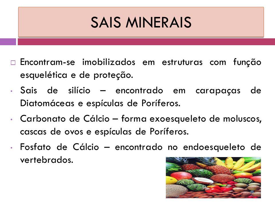 SAIS MINERAIS  Encontram-se imobilizados em estruturas com função esquelética e de proteção.