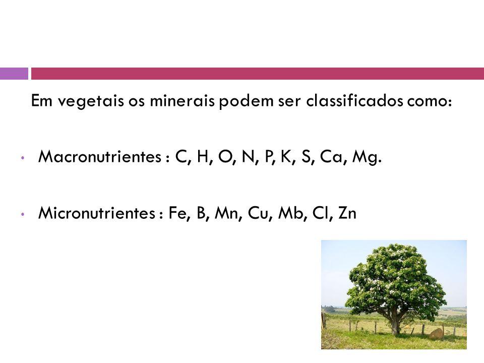 Em vegetais os minerais podem ser classificados como: Macronutrientes : C, H, O, N, P, K, S, Ca, Mg.