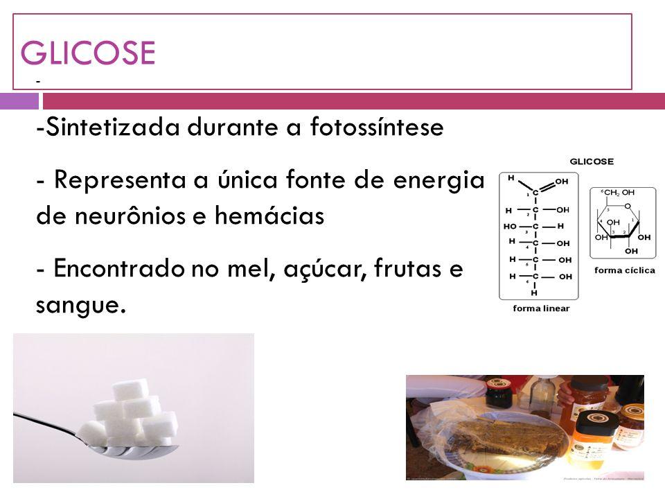 GLICOSE - -Sintetizada durante a fotossíntese - Representa a única fonte de energia de neurônios e hemácias - Encontrado no mel, açúcar, frutas e sangue.