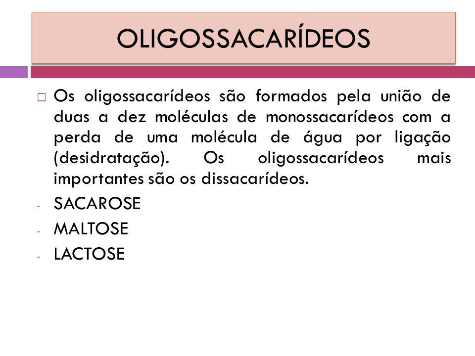 OLIGOSSACARÍDEOS  Os oligossacarídeos são formados pela união de duas a dez moléculas de monossacarídeos com a perda de uma molécula de água por ligação (desidratação).