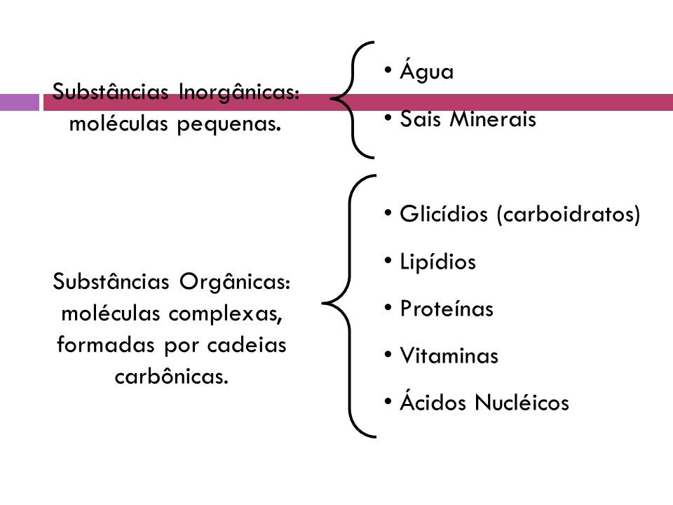 Mg ++ - Componente da clorofila - Interação das subunidades dos ribossomos Ca ++ - Coagulação sangüínea - Contração Muscular - Componente de ossos e dentes