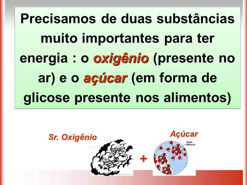 oxigênio açúcar Precisamos de duas substâncias muito importantes para ter energia : o oxigênio (presente no ar) e o açúcar (em forma de glicose presente nos alimentos) Açúcar + Sr.