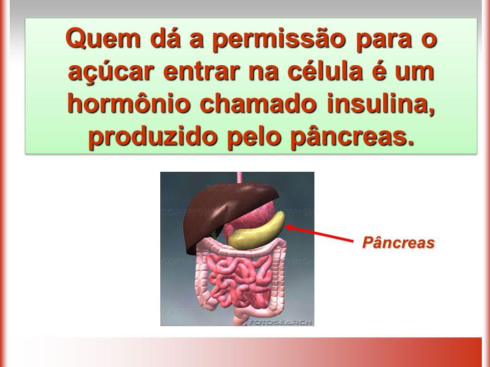 Pâncreas Quem dá a permissão para o açúcar entrar na célula é um hormônio chamado insulina, produzido pelo pâncreas.
