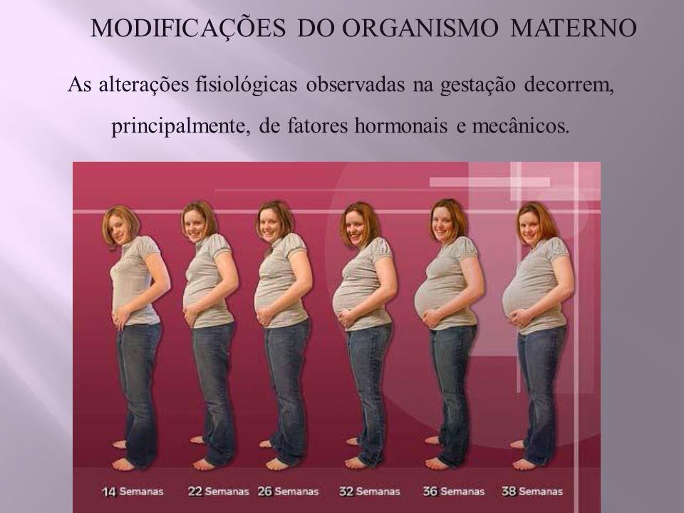 MODIFICAÇÕES DO ORGANISMO MATERNO As alterações fisiológicas observadas na gestação decorrem, principalmente, de fatores hormonais e mecânicos.