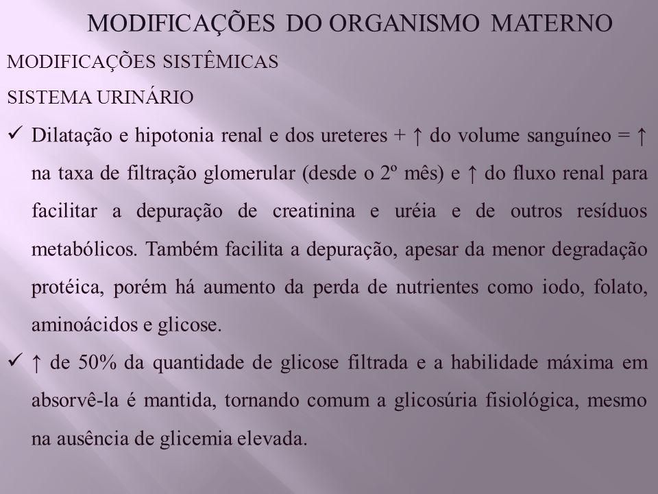 MODIFICAÇÕES DO ORGANISMO MATERNO MODIFICAÇÕES SISTÊMICAS SISTEMA URINÁRIO Dilatação e hipotonia renal e dos ureteres + ↑ do volume sanguíneo = ↑ na taxa de filtração glomerular (desde o 2º mês) e ↑ do fluxo renal para facilitar a depuração de creatinina e uréia e de outros resíduos metabólicos.