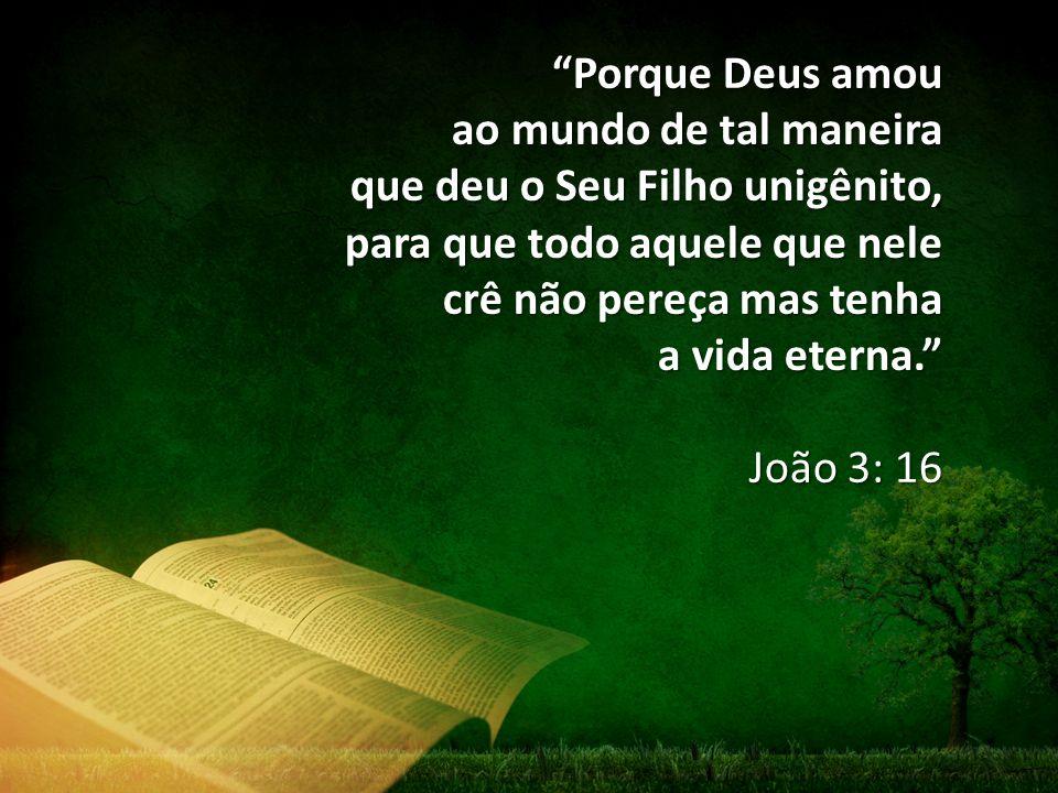 """""""Porque Deus amou ao mundo de tal maneira que deu o Seu Filho unigênito, para que todo aquele que nele crê não pereça mas tenha a vida eterna."""" João 3"""