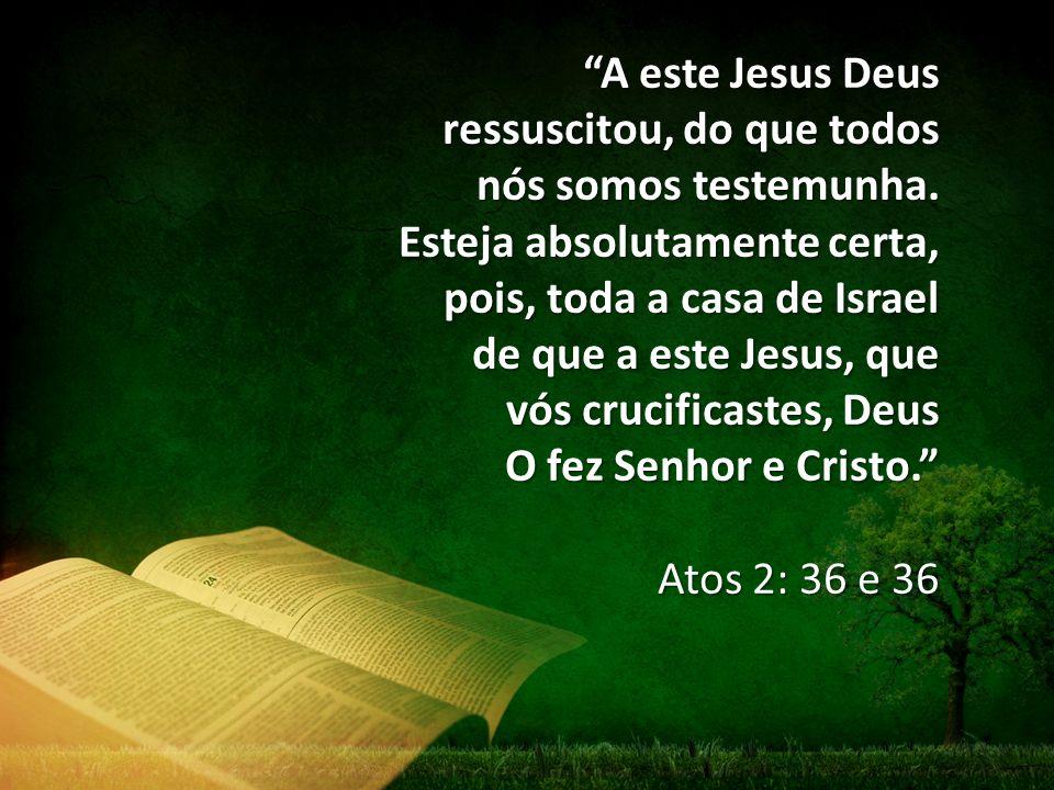 """""""A este Jesus Deus ressuscitou, do que todos nós somos testemunha. Esteja absolutamente certa, pois, toda a casa de Israel de que a este Jesus, que vó"""