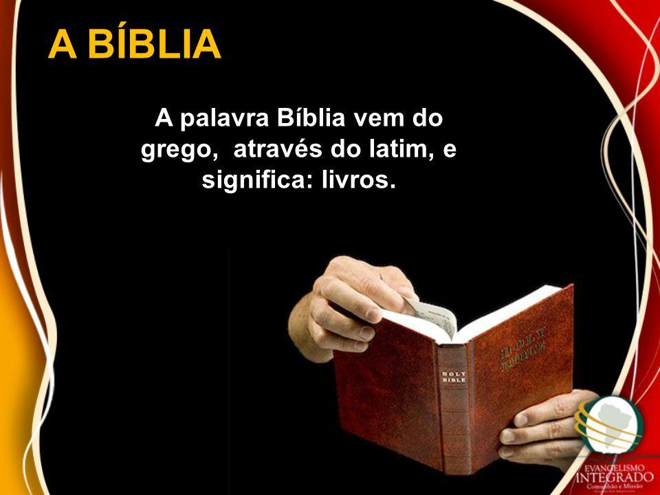 A BÍBLIA A palavra Bíblia vem do grego, através do latim, e significa: livros.