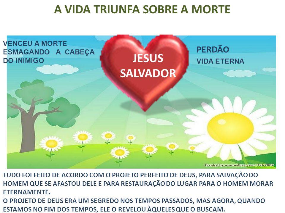 JESUS SALVADOR TUDO FOI FEITO DE ACORDO COM O PROJETO PERFEITO DE DEUS, PARA SALVAÇÃO DO HOMEM QUE SE AFASTOU DELE E PARA RESTAURAÇÃO DO LUGAR PARA O