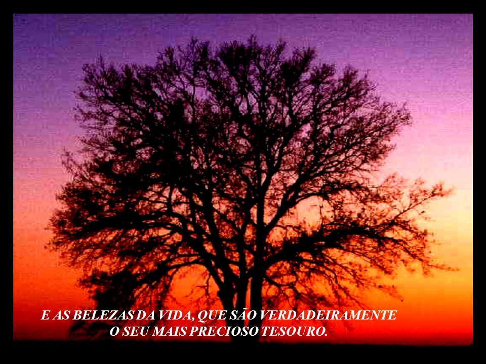 E AS BELEZAS DA VIDA, QUE SÃO VERDADEIRAMENTE O SEU MAIS PRECIOSO TESOURO OLHE EM VOLTA, VALORIZE O QUE VOCÊ TEM: O SEU LAR, AS PESSOAS AMADAS, AS AMI