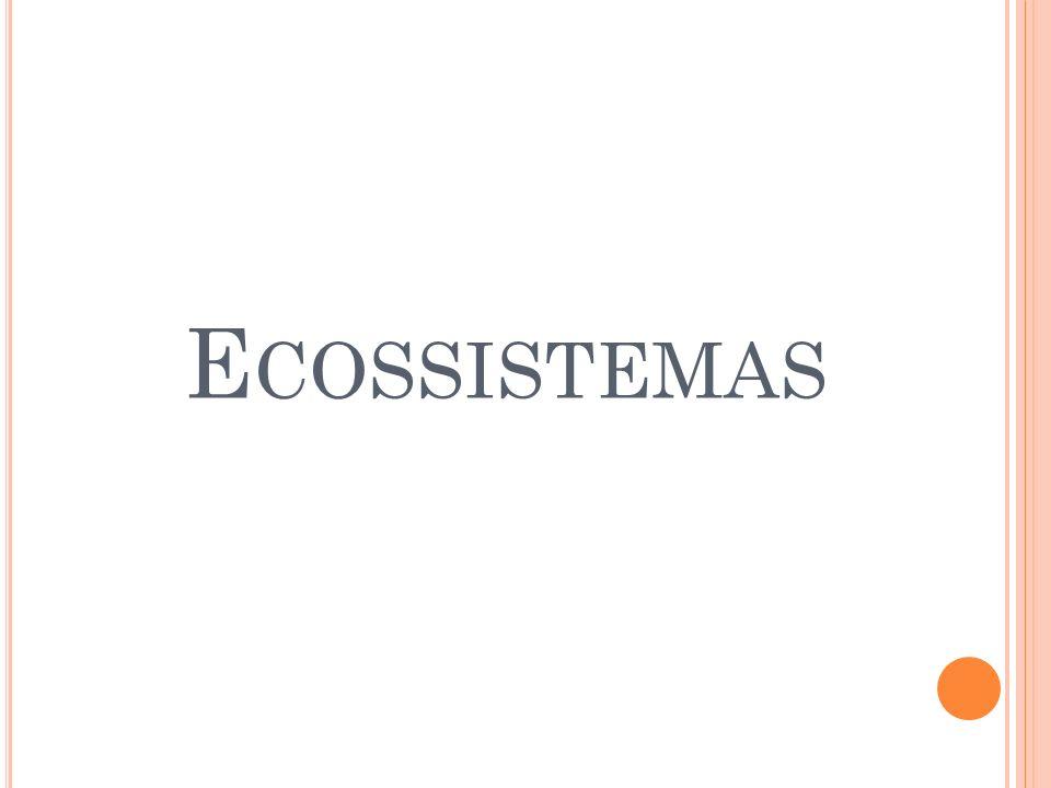 E COSSISTEMAS