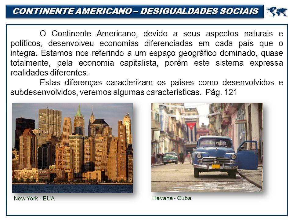 CONTINENTE AMERICANO – DESIGUALDADES SOCIAIS  O Continente Americano, devido a seus aspectos naturais e políticos, desenvolveu economias diferenciadas em cada país que o integra.