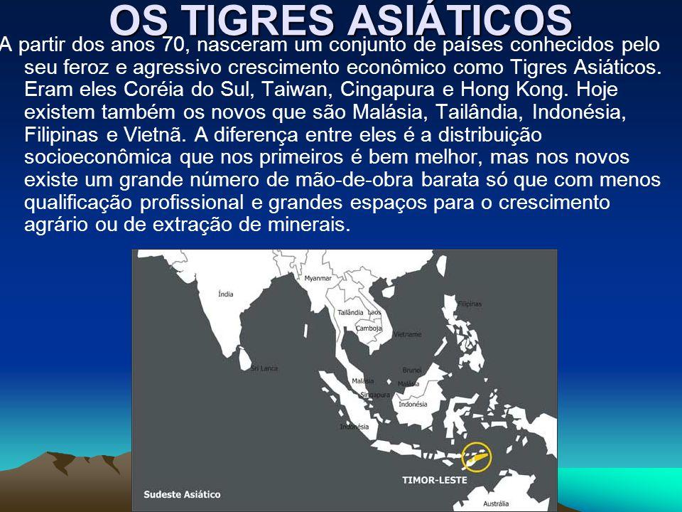 OS TIGRES ASIÁTICOS A partir dos anos 70, nasceram um conjunto de países conhecidos pelo seu feroz e agressivo crescimento econômico como Tigres Asiát