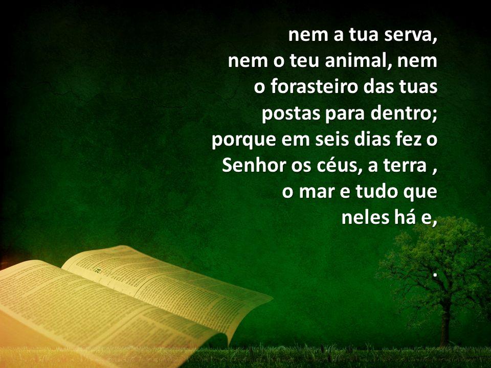 nem a tua serva, nem o teu animal, nem o forasteiro das tuas postas para dentro; porque em seis dias fez o Senhor os céus, a terra, o mar e tudo que neles há e,.