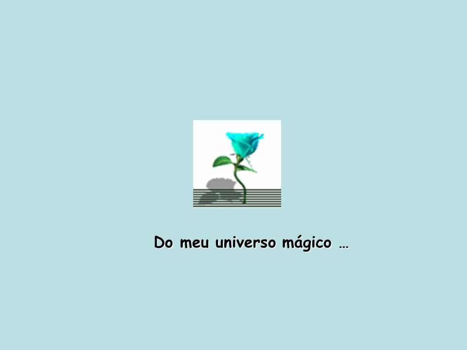 Do meu universo mágico, sem soltar a tua mão...