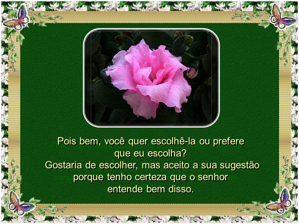 Sendo assim, terá que ser somente uma rosa, mas faço questão que seja a mais linda que exista em sua floricultura.