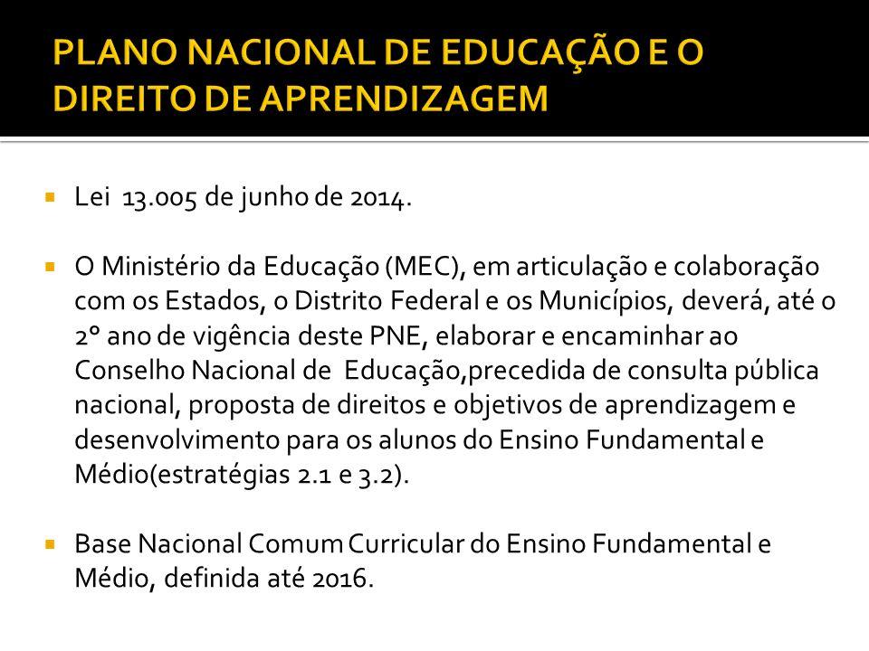  Lei 13.005 de junho de 2014.  O Ministério da Educação (MEC), em articulação e colaboração com os Estados, o Distrito Federal e os Municípios, deve
