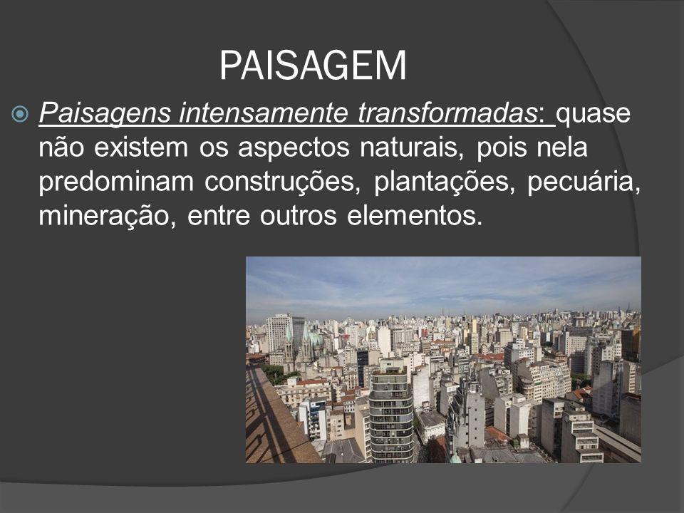 PAISAGEM  Paisagens intensamente transformadas: quase não existem os aspectos naturais, pois nela predominam construções, plantações, pecuária, mineração, entre outros elementos.