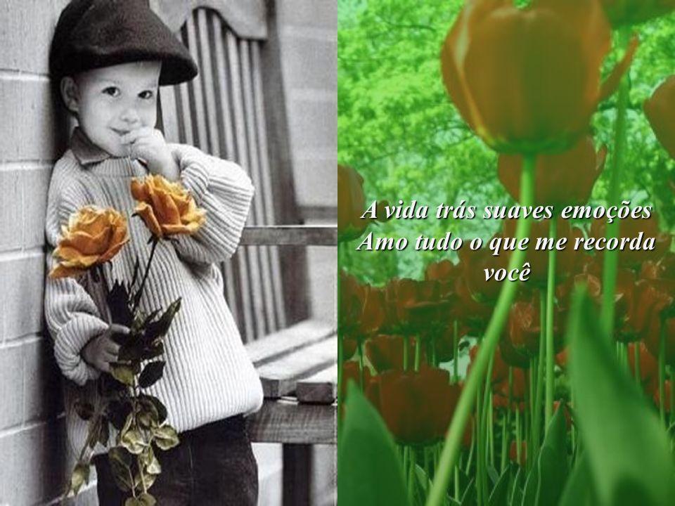 A vida trás suaves emoções Amo tudo o que me recorda você